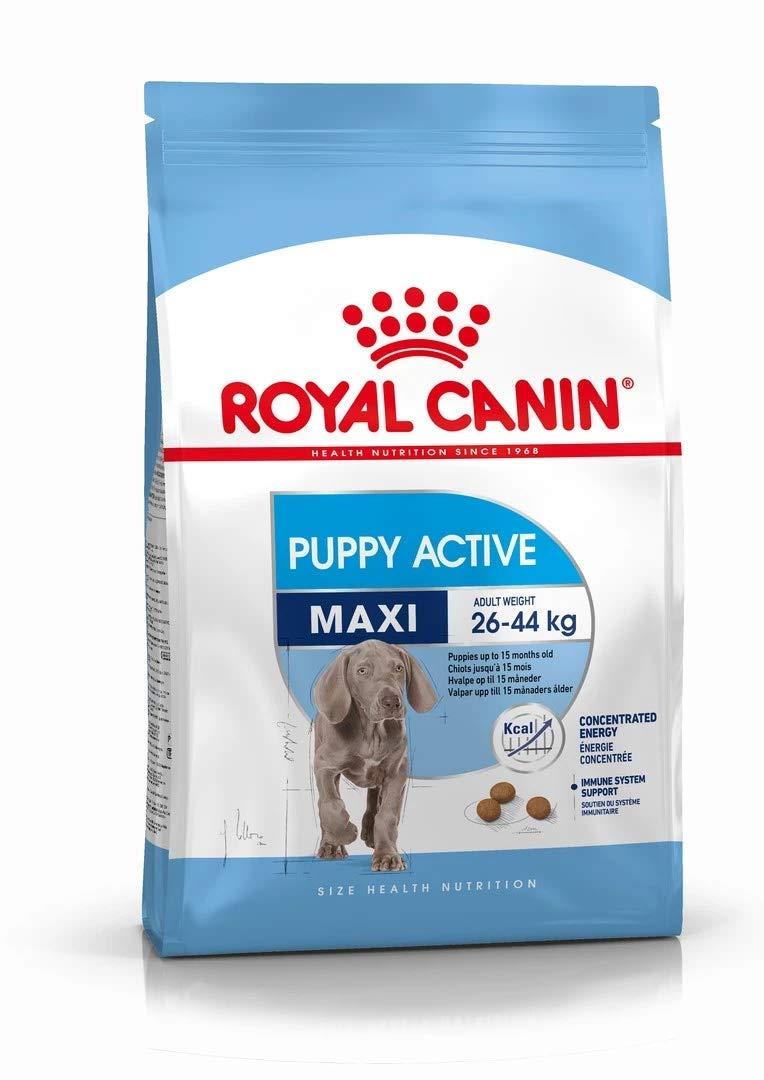 Pienso Royal Canin Maxi Junior Active
