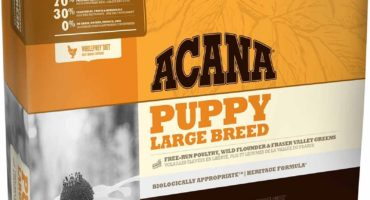 pienso para cachorros acana puppy large breed