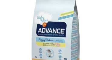 Pienso Advance Puppy Medium para cachorros