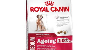 Royal Canin Medium 10+