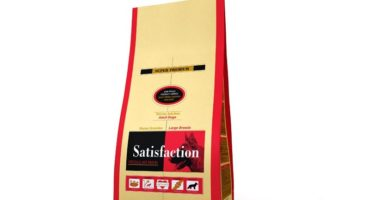 beneicios del pienso satisfation regular maxi