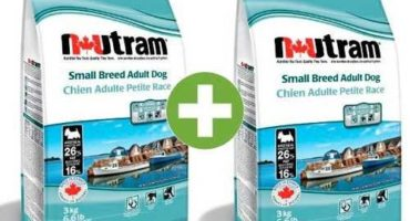 Piensos Super premium Nutram Adult Dog