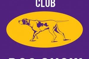 westminster-kennel-club-nueva-york-2019