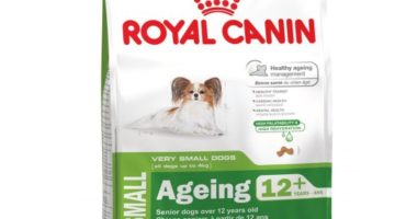 royal-canin-x-small-ageing-12