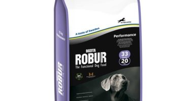 Pienso Bozita Robur Performance 33/20 adultos