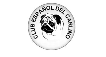 Club español de la raza Carlino