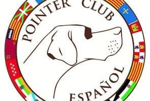 Club español del Pointer