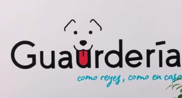 guarderia canina madrid centro